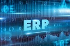 businesses with erp